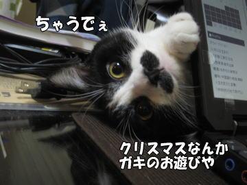 b0041182_11251821.jpg