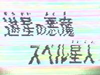 b0061007_1322546.jpg