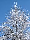 2005年12月28日(水) 晴れ・-2℃_a0024488_95009.jpg
