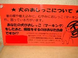 b0007893_22421352.jpg
