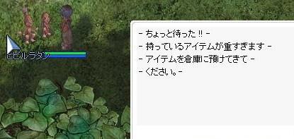 d0037213_2542387.jpg