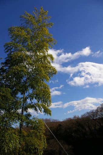 空は快晴、谷戸の空気を切り裂くように餅をつく音が広がる_c0014967_10182773.jpg