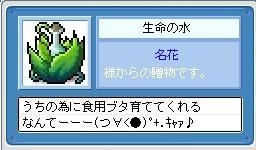 c0006671_21284578.jpg