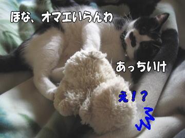 b0041182_1103211.jpg