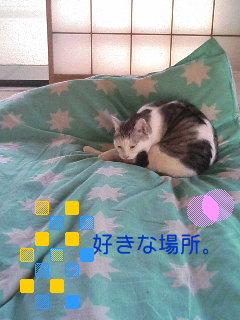 f0016241_18383296.jpg