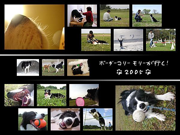 c0053844_1342762.jpg