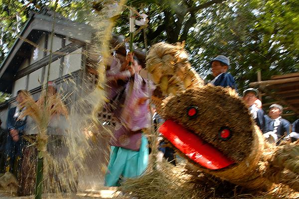 <第7話 野口神社の汁かけ祭り> 役行者物語_a0045381_18563333.jpg