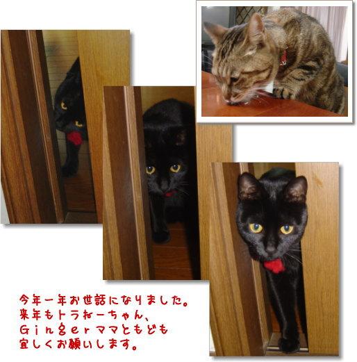 b0066985_1093773.jpg