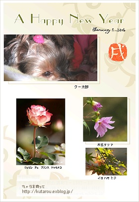 c0032203_2356129.jpg