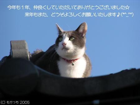b0018017_1374442.jpg