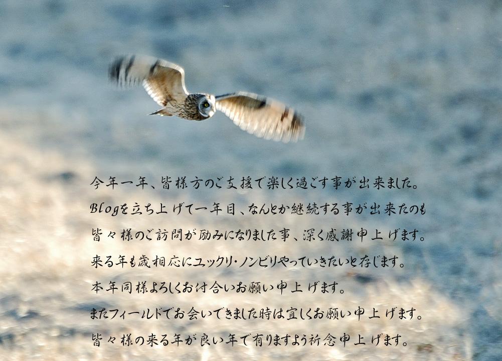 c0018118_13381327.jpg