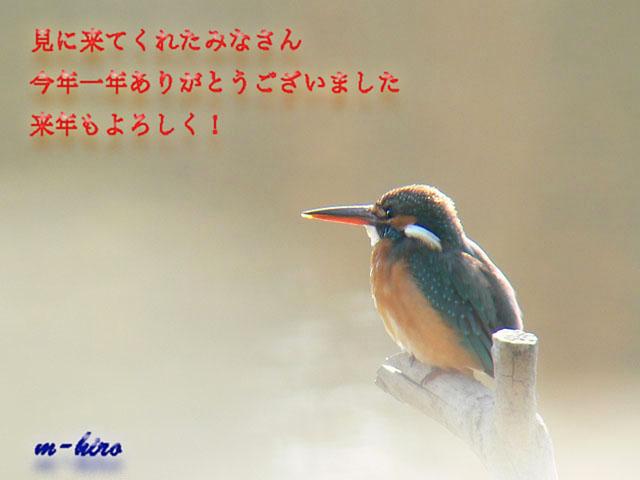 b0021375_1483635.jpg