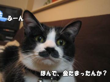 b0041182_0432011.jpg