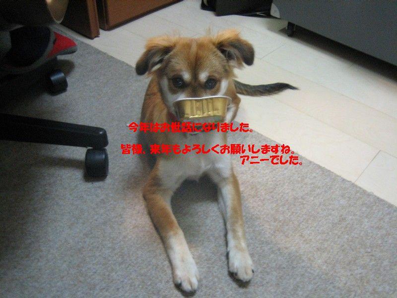 b0054391_1625356.jpg