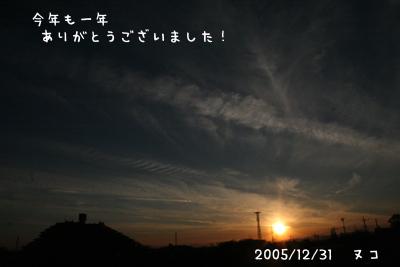e0007996_16555745.jpg