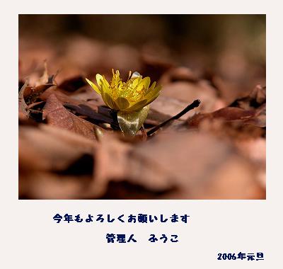 c0027027_1581950.jpg