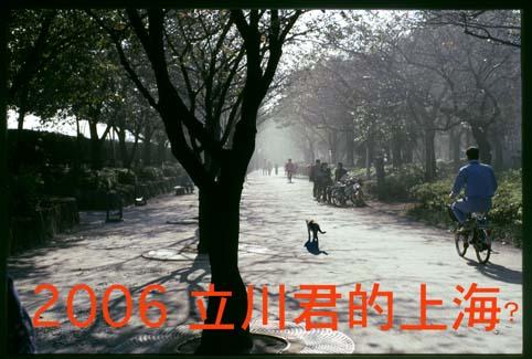 b0065535_12151327.jpg