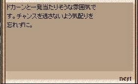 a0062769_8514890.jpg
