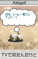 c0044075_213384.jpg