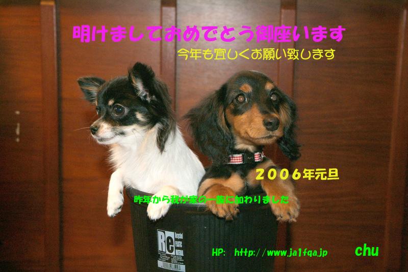 b0024798_15402523.jpg