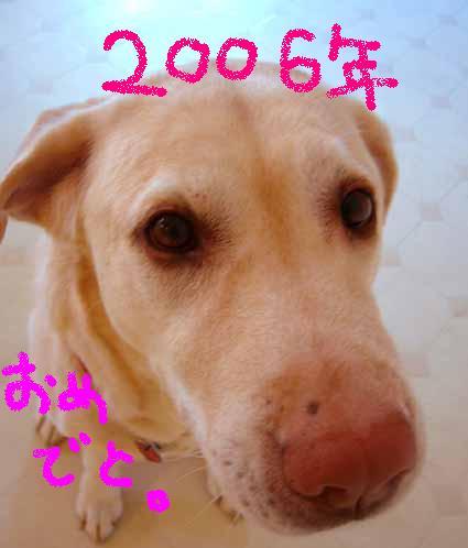 e0014445_523745.jpg