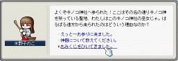 b0069938_18412417.jpg