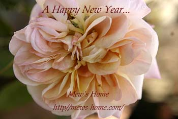 A Happy New Year!_b0045855_9353956.jpg