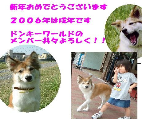 c0069372_1728458.jpg
