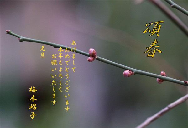 f0013727_144349.jpg