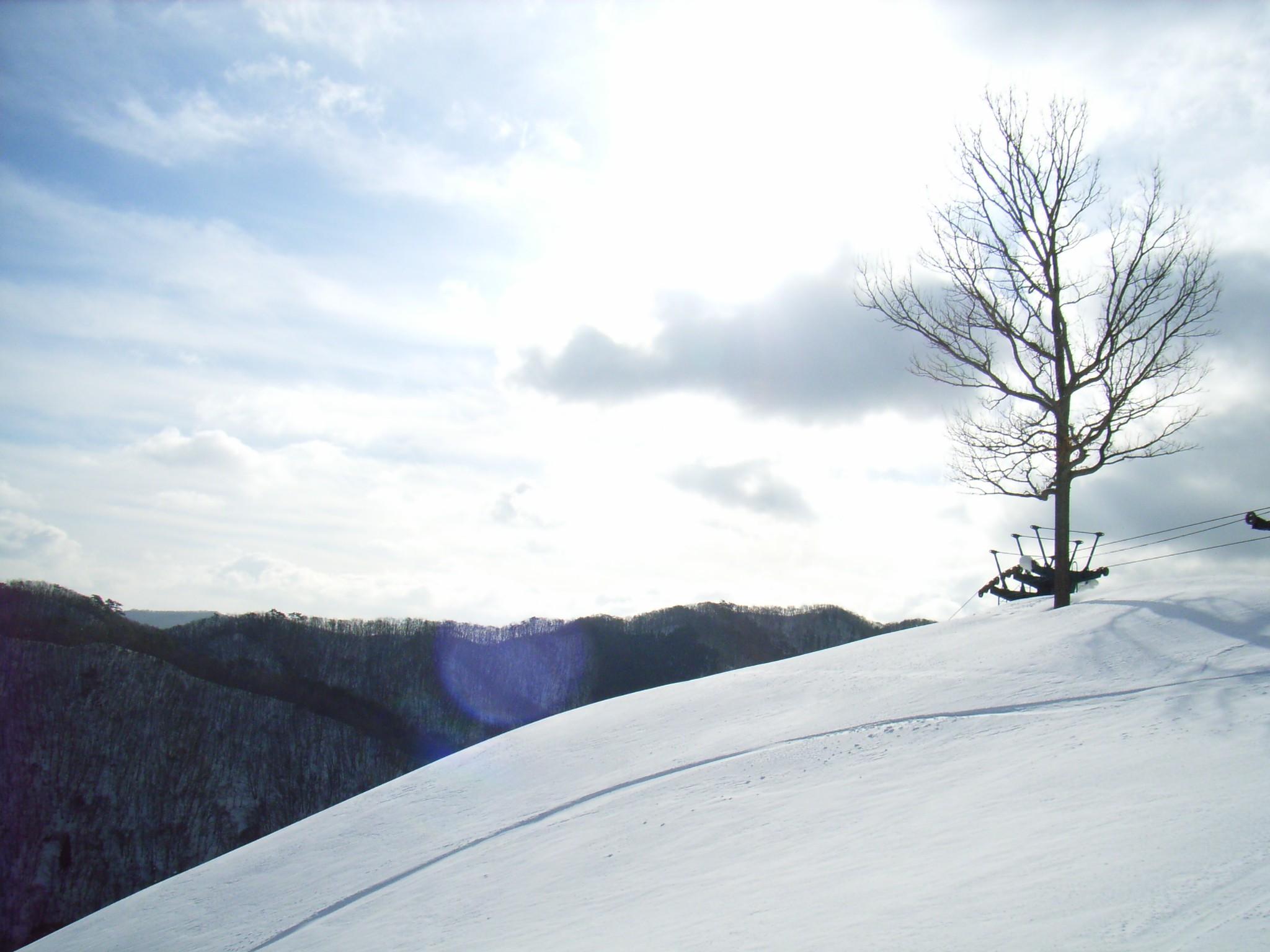 雪山の雪の上にスノボで通ったあとが、物好きがいるもんだ。結構、この線を見... el espor