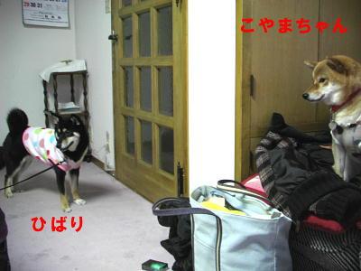 f0023026_402025.jpg
