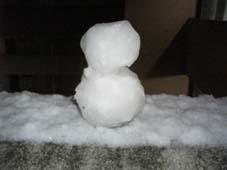 ◆記録的大雪か??_e0074053_204634100.jpg