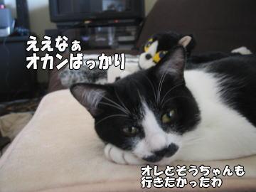 b0041182_16251946.jpg
