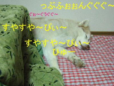 e0059090_1714384.jpg