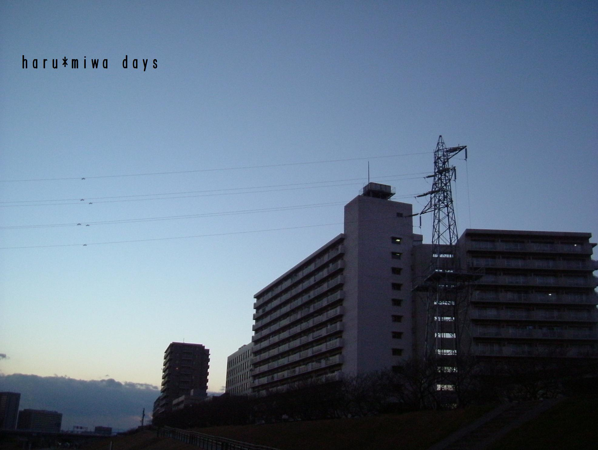 d0039963_1654876.jpg