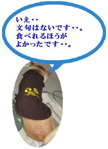 e0085147_2341894.jpg