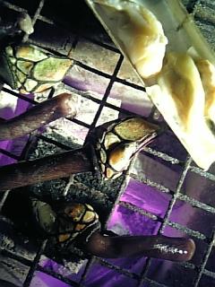 亀の手&カレー_c0033210_1033747.jpg
