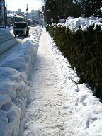 2006年1月11日(水) 晴れ・0℃_a0024488_9404350.jpg