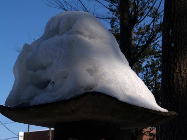 故郷雪国の景色8 どすこいな雪_a0042976_8484949.jpg