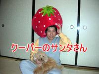 b0068634_1722939.jpg