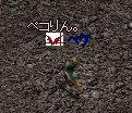 e0058448_1474175.jpg