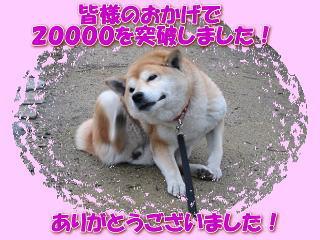 ありがとうございます! さきほど。。。_c0049950_23531969.jpg