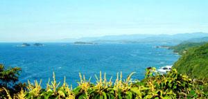海部沿岸はミネラルの宝庫_a0039096_2051535.jpg