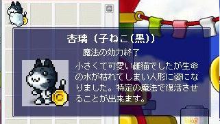 f0041933_2033877.jpg
