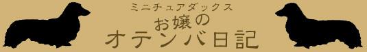 ミニチュアダックス お嬢のオテンバ日記