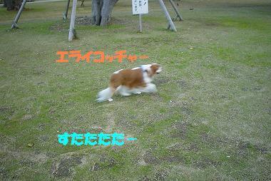 f0032645_23403293.jpg