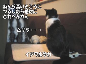 b0041182_9381880.jpg