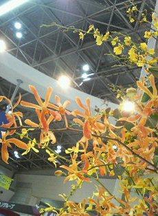 東京ビッグサイト 「花を添える」仕事_a0042928_0184166.jpg