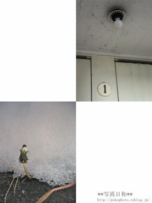 a0042414_17533817.jpg