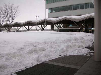 大雪に想う(1)_f0046622_3412275.jpg